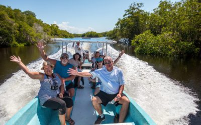 7 Steps to an Unforgettable Discovery Tour